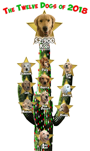 Revised RAGofAZ 12 Dogs of Christmas Day 11