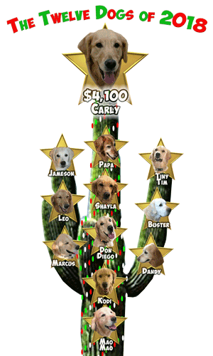 Revised RAGofAZ 12 Dogs of Christmas Day 12