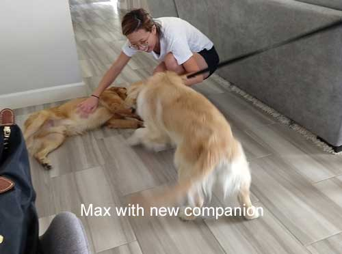 Max-19-034-with-new-companion-2.jpg