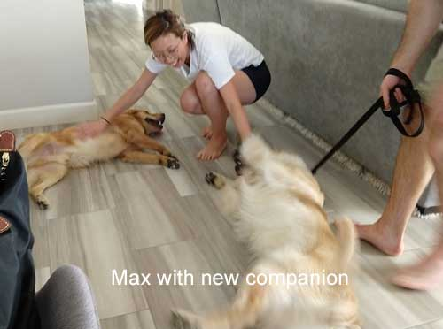 Max-19-034-with-new-companion-3.jpg