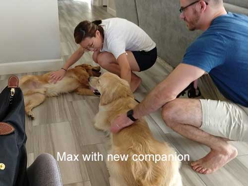 Max-19-034-with-new-companion.jpg