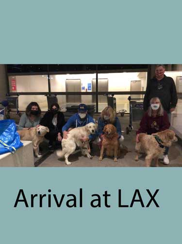 Arrival_at_LAX.jpg